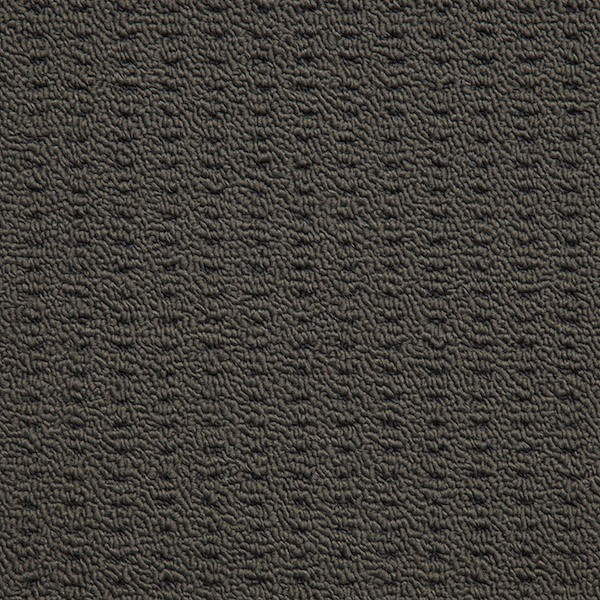 Nevada Sands Modern And Affordable Products Carpet